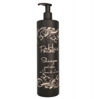 Sampon Hair Potion Post Color cu Seminte de In  1000 ml